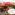 バンコク【男旅】3泊5日旅行記<まとめ&概要>使ったお金はいくら?(全5P)